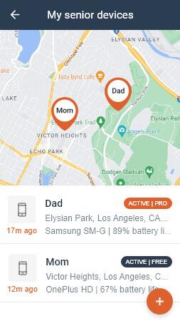 Fall Alert